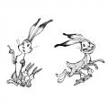 penelope_06_bunnies